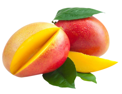 Mango Tommy one of our Tropical Fruit